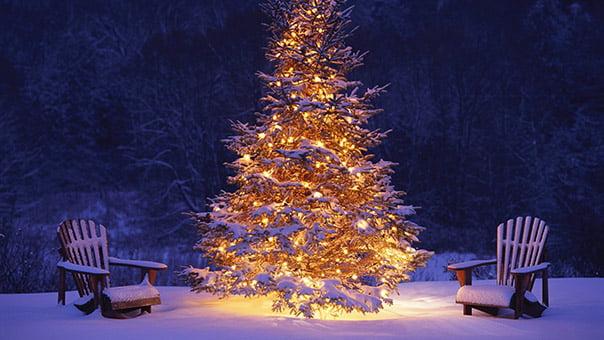 Fina julgranen