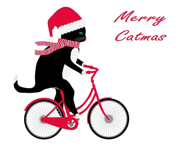 Katt åker cykel med julmössa