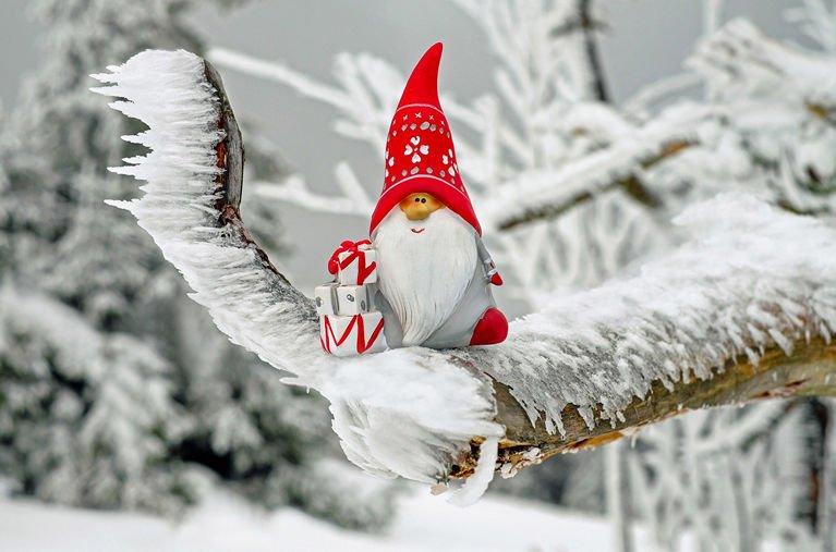 Tomte sitter på ett träd